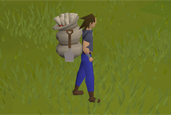 Master Clue Reward and Quality of Life Changes